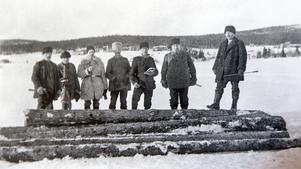 Timmertummare på Långnässjön med Fjällåkern i bakgrunden.