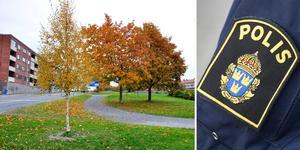 Misshandeln ska ha skett vid Österängsparken. Montage av arkivbilder. Foto: Lars Ljungmark/TT