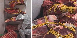 Köttet som måste destrueras, enligt beslut från Borlänge kommuns miljökontor. Foto: Borlänge kommun/miljökontoret