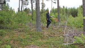 Etapp ett har Farbod Sahampour tänkt ska byggas på kullen intill Svensbodavägen. Så många träd som möjligt ska stå kvar.