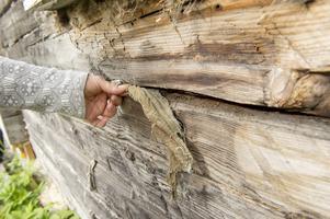 För att kunna göra en datering tittar Johanna på hur timret bearbetats, om stockarna är sågade (tidigt 1900-tal) eller bilade med yxa (metod från medeltiden). Om huset är påbyggt, då kan man se skillnaderna i ålder på timret.