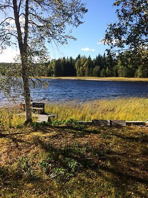Den som köper ön får en egen brygga vid sjön. Bild: Ekeby mäklare