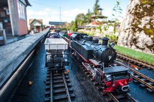 Yxskaftkälens Järnvägar lockar både turister från länet och övriga Sverige. Men det kommer även en hel del entusiaster från kontinenten säger Karl-Anders Lindberg.