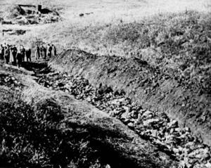 Ravinen i Babi Yar utanför Ukraina där 14 000 civila mördades av de nazistiska styrkorna. Eva-Lena Jansson (S) reflekterar kring dagens läge och lärdomar av historien.