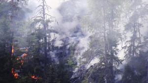 Elden spred sig snabbt längs bergssluttningen.