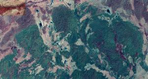 Foto: Lantmäteriet. IR-bild från norra delen av Trängsletbranden. Grönfärgat är brända områden.