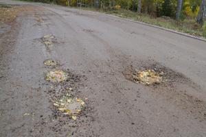 Grop efter grop. Vädret har gått hårt åt grusvägen som gör bilfärden skakig.