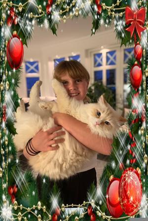 214) Här är Sienna Bokelund med vår snövita lussekatt Alonso. Han är av rasen Neva Masquerade, han är 5 år gammal och världens mysigaste katt. Foto: Eva Bokelund