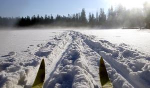Satt nyss och tittade på ett inslag i Mittnytts nyhetsrapportering. Där visades raska gossar som fraktade snö till en planerad åkslinga på cirka en kilometer. Vilket dumt påhitt, skriver signaturen