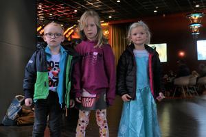 Syskonen Ville och Alice Wistrand och såg filmen tillsammans med kusinen Sigrid Hasselwander (till höger), som dagen till är hade klätt ut sig till Elsa.
