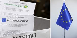 Skinnskatteberg är en av få kommuner i landet där över hälften av EU-väljarna förtidsröstade. Det visar statistik från Valmyndigheten som nyhetsbyrån Siren har sammanställt.