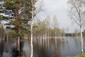 I Äppelbo ligger stora arealer under vatten.