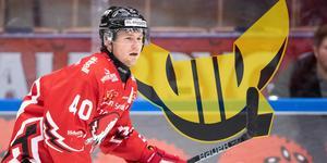 Mattias Kalin får byta rött mot gulsvart till nästa säsong. Foto: Daniel Eriksson / BILDBYRÅN