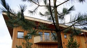 Barrträd knyter an till området och norra Kyrkberget både i utemiljön och Bergsparkens fasader som består av lärkträ.