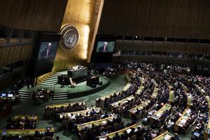 FN-samarbetet fyller i år 75 år och behövs mer än någonsin, skriver Annelie Börjesson. Foto: Pontus Lundahl / TT.