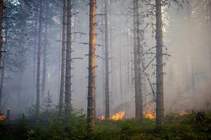 Räddningstjänsterna avråder från eldning.