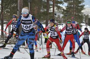 Länsåkarna fick med sig tolv medaljer hem från JSM-tävlingarna i Idre i helgen. På bilden syns Tullusåkarna Sofia Frimodig och Linn Jansson i D16–17:s masstart. I samma tävling slutade Hedes Sofia Jansson tvåa.