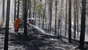 Planen: Mindre skopande flygplan ska släcka skogsbränder