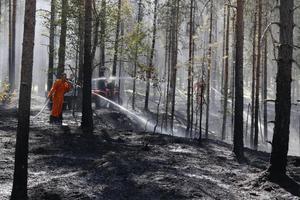 Sommaren 2018 härjade skogsbränder bland annat i Sala.