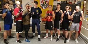 Från vänster: Mahdi Eqbali (91 kg), Oscar Brunsell (75 kg), Abdi Noor (75 kg), Victor Olsson (81 kg), Emil Harrysson (64 kg),  David Elmir (75 kg), David Olsson (81 kg), Anton Hellström (69 kg). Bild: BK FALKEN