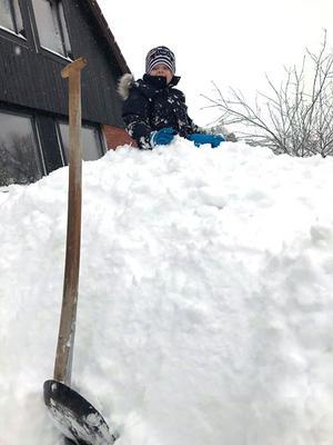 Sonen Benjamin har det kul i snön på Rönnbärsvägen i Fågelsången. Foto: Anastasia von Born