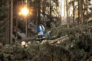 Foto: Arkivbild/ Pär Sönnert.Den långa och snörika vintern tillsammans med en industri som går på högvarv, har bidragit till att driva upp priserna.