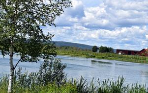 Hessesjön är klarare än tidigare.