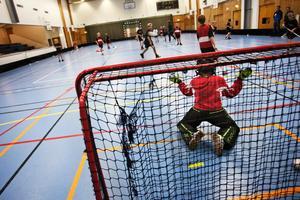 Insändarskribenten anser att det finns tillräckligt med idrottshallar i Sundsvalls kommun. Foto: Johan Hultgren