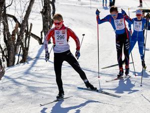 Viking Olsson från Hägglunds segrade i Lilla Fjälltopploppet.
