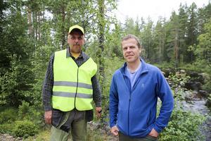 Jan Andersson, fiskevårdsområdesföreningens kassör, och länsstyrelsens fiskerikonsulent Håkan Danielsson hoppas att öringen ska stortrivas i nyrestaurerade Håjensån.