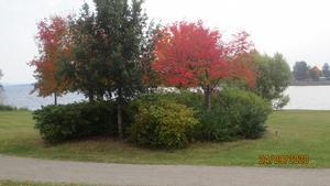 Fina höstfärger vid sjön Varpen