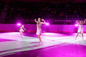 Publiken bjöds på olika dansnummer i sprakande färger.