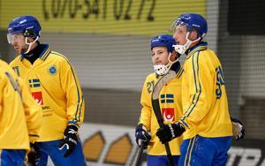 Christoffer Fagerström, Christoffer Edlund och Simon Jansson är alla med i den svenska truppen.