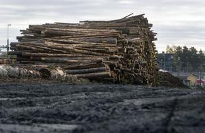 Skog, vatten- och vindkraft är naturvärden där inkomsterna skeppas söderut. Det måste få ett slut, skriver centerpartisten Håkan Larsson som vill se ett system som i Norge som satsar på landsbygden.