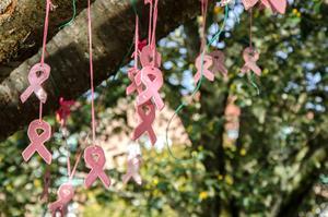 Tanken är att man kan ta en reflex eller ett rosa band från trädet och swisha en slant till Bröstcancerförbundet.