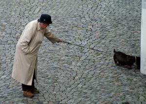 Relationer med människor och djur - inte mindre viktigt på ålderns höst än tidigare i livet. Bild: Hasse Holmberg