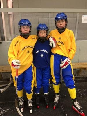 Hanna Palm, Emelie Brundin och Amanda Vainio.Bild: Privat