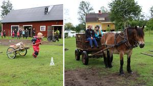 Det bjöds på häst och vagn i olika former på det öppna stallet.