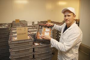 Niklas Hagberg, produktionsansvarig i Gävle, med en låda av storsäljaren, Godingar. Även de kommer inom kort att märkas som Gudruns.
