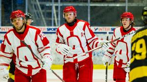 Tony Mårtensson kom till Almtuna inför säsongen från SHL-laget LHC.