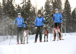 Frida Åsander (16) med vorsteh hunden Ernst, Maja Sjölund (17) med Wilma och Sanna Näslund (23) med Zigge. Alla tre tävlar för Härnösands draghundsklubb och tog medaljer i VM tidigare i år.
