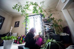 Hemmet är fullt av växter för att hjälpa till att lindra pälsallergin och astman som Martina Gustafsson har.