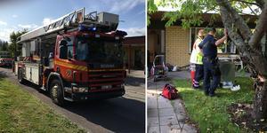 En kvinna fick tas om hand efter att en diskmaskin börjat brinna i Härnösand.