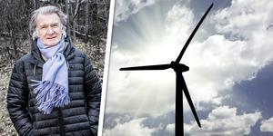 Anders Wijkman, ordförande i nätverket Vindkraftens klimatnytta.