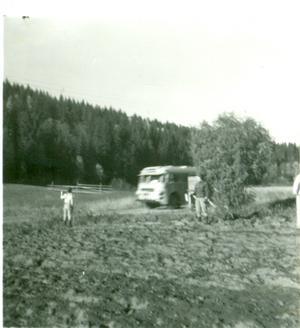Vi barn i potatisupptagningen. Agneta vinkar av mamma som är på väg till Örnsköldsvik med postbussen. Foto: Privat