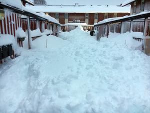 Skribenten efterlyser gratisartiklar om snöovädret och får svar direkt av Tidningen Ångermanlands chefredaktör.