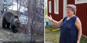 Ingrid Fredlund är en av de Losbor som tröttnat på att ha björn lufsande runt i byn.