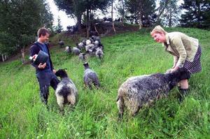 Linda Forss och Olov Östling är jättestolta över att ha fått igång Fjällbeteverksamhet i Duved och ser speciellt fram emot helgens event på Fjällvallen. Foto: Elisabet Rydell-Janson