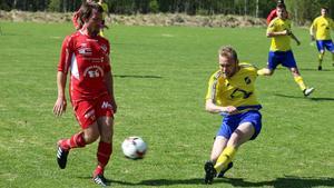 Lillhärdal kämpade heroiskt och var mycket nära att knipa poäng mot seriefavoriten Anundsjö.