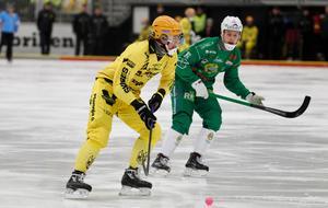 Vetlanda blev utslaget av Hammarby i kvartsfinal efter en imponerande säsong av bland annat Joakim Andersson som är den enda Vetlandaspelare att ta plats i laget.